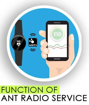function of ant radio services
