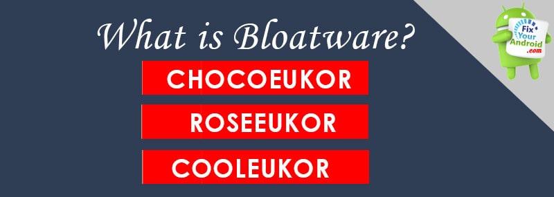 What-is-Bloatware